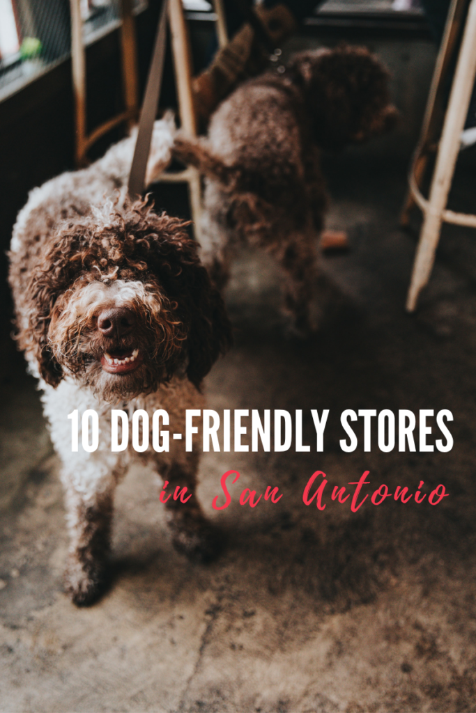 Calling All Shopaholics: 10 Dog-Friendly Stores in San Antonio - Dog