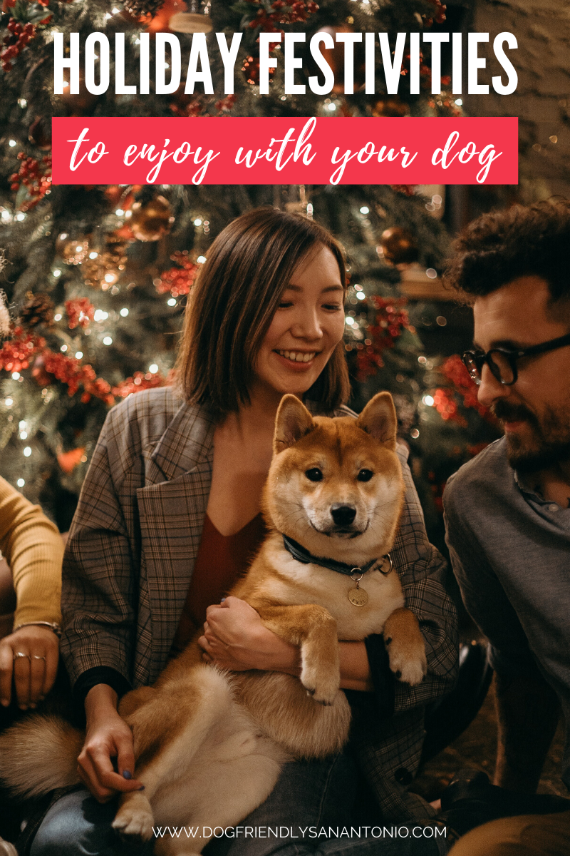 11 Fun and Festive Dog Friendly Holiday Activities in San Antonio